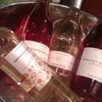 Los nuevos vinos de la D.O. de Navarra