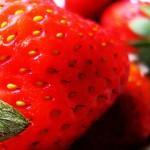 Las fresas: muchos nutrientes, pocas calorías
