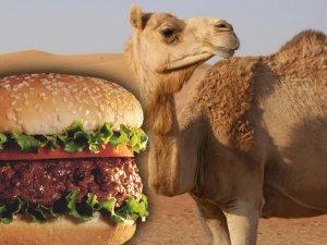 hamburguesa de camello