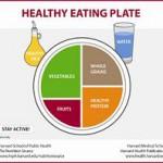 Healthy Eating Plate versus My Plate