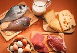 proteinas lipidos y carbohidratos